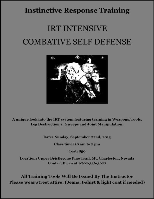 IRT Intensive Combative Self Defense (1)